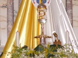 Reliquia Beato Giovanni paolo II