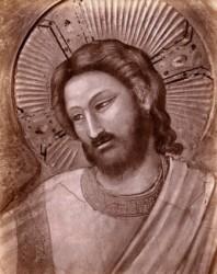 Volto di Gesù, particolare di Giotto