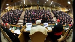 fine sinodo