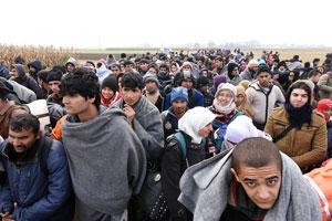 Società / Flussi misti, ingressi irregolari. Per parlare correttamente di migranti in Italia bisogna partire dai numeri