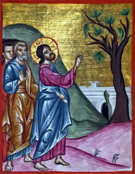christ-and-the-fig-tree