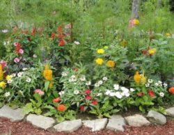 r-il-giardino_NG1 (372 x 289)