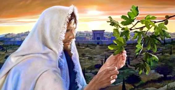 Vangelo della domenica (18 novembre) / La parola del Signore dà all'uomo rifugio e conforto
