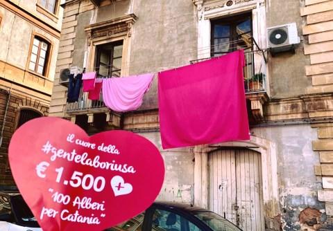 Catania / A San Cristoforo piantate le radici del futuro. Cento ligustri messi a dimora e affidati ai residenti