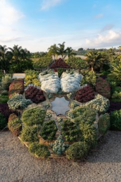 Radicepura festival-giardino