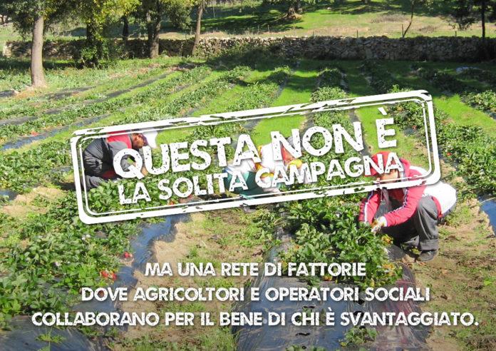 Fattorie Sociali Sicilia
