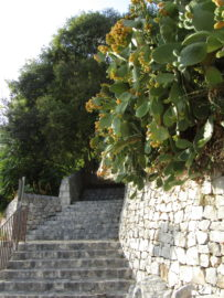Ragusa Ibla monumenti ristoranti scale percorso pedonale